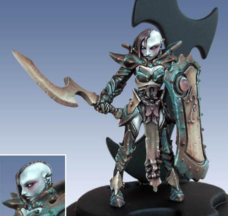 Dark elf antipaladin