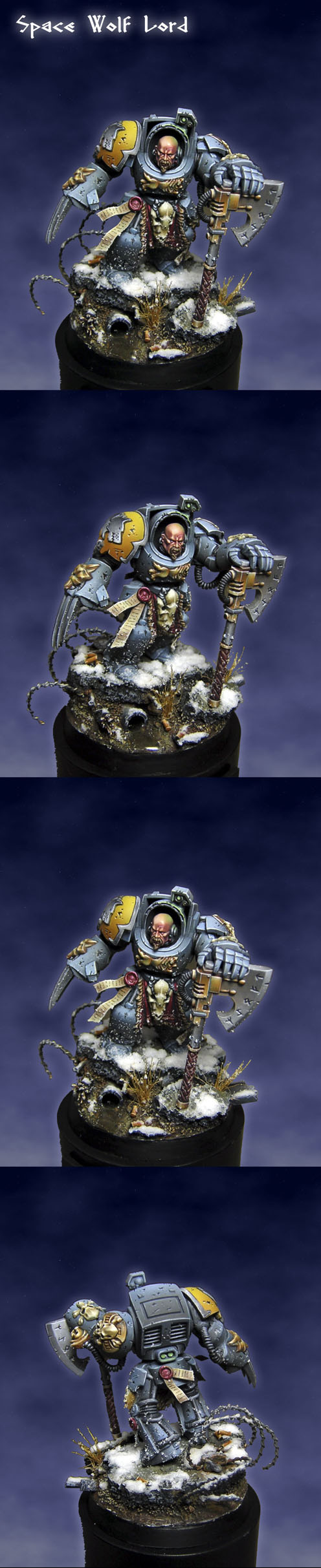 Space Wolf Lord, Silver GD Spain 2011
