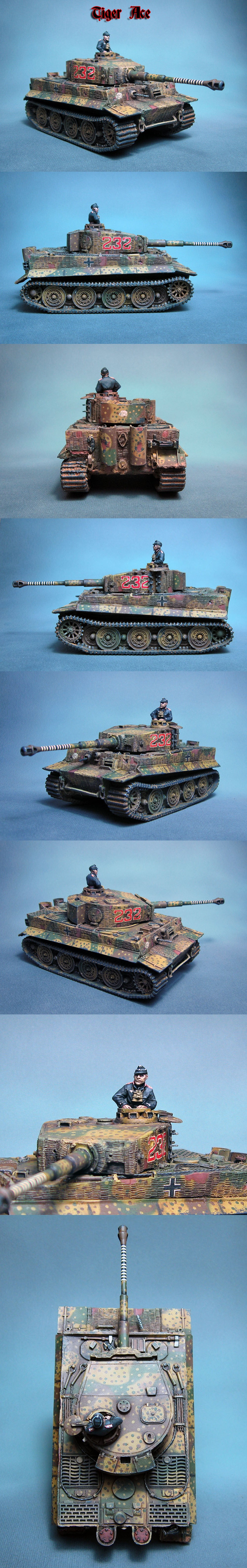 Bolt Action German Waffen SS Tiger Ace