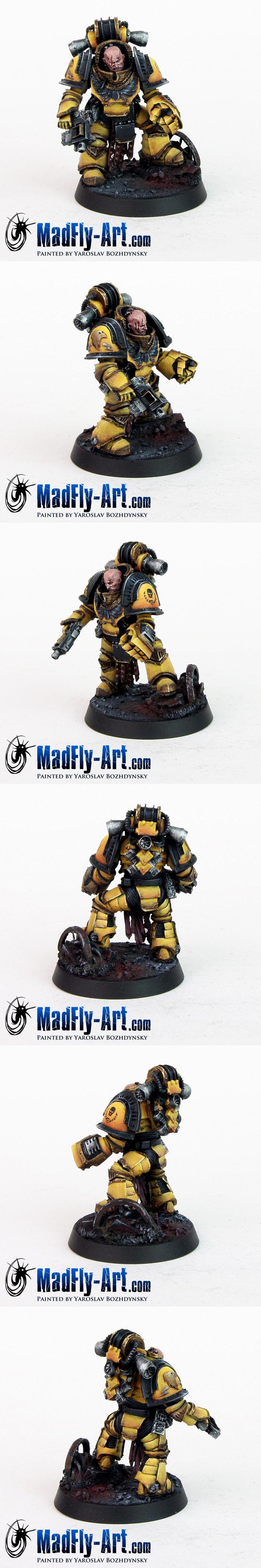Imperial Fists Legion Centurion
