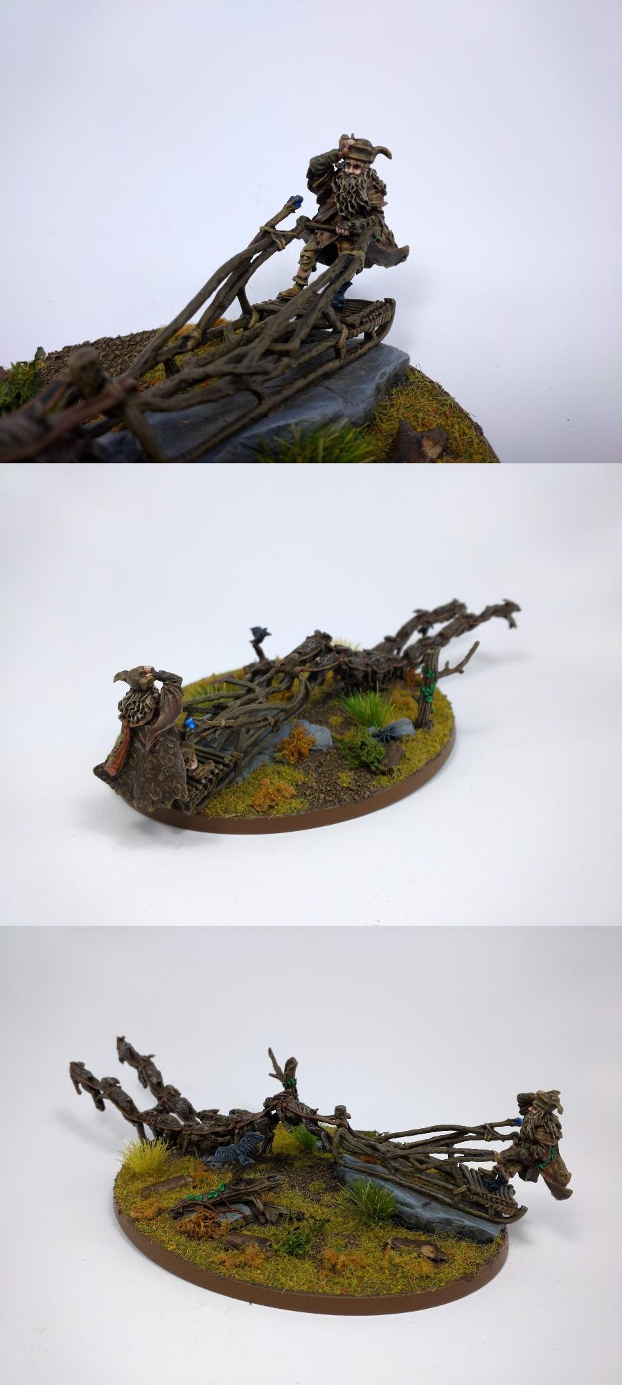 Radagast the Brown on Sleigh