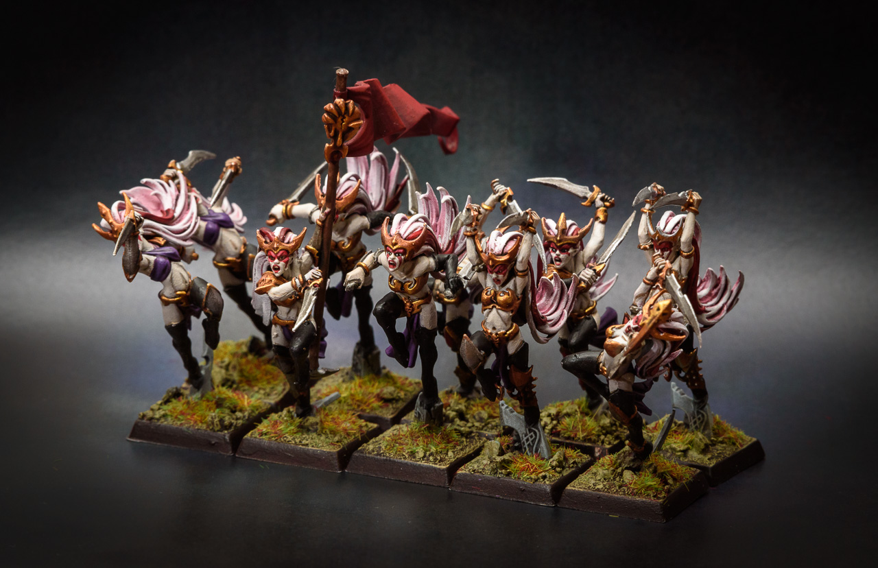 Witch Elves unit