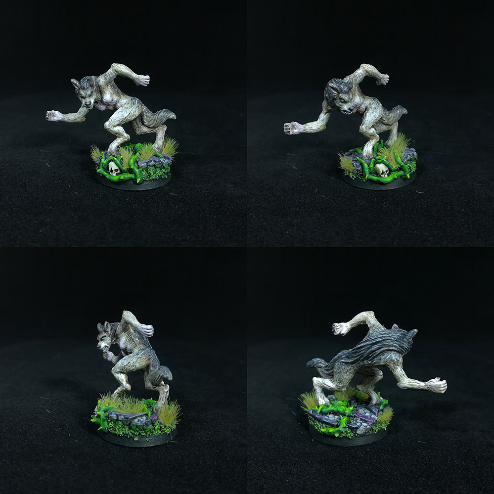 Female Werewolf D&D miniature