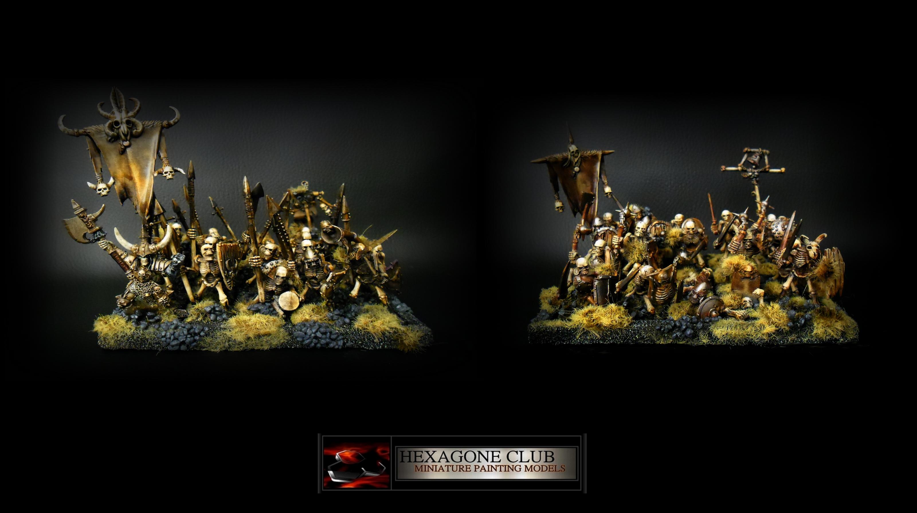 Warhammer Vampire Counts Skeleton Warriors .
