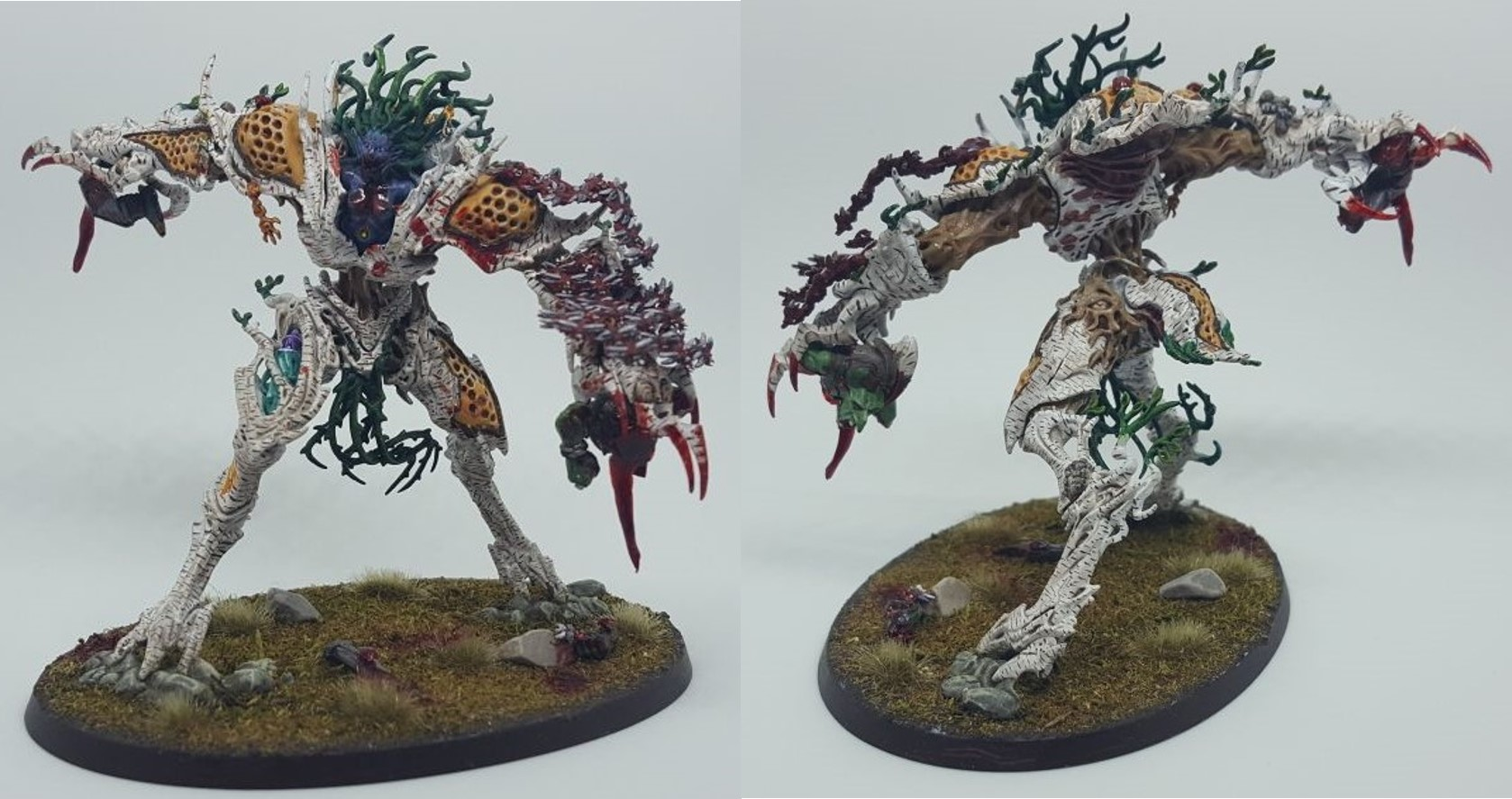 birch Drycha Hamadreth