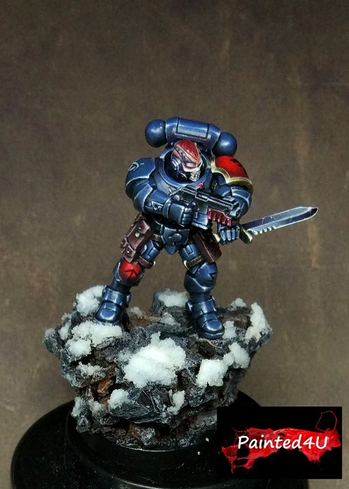 Primaris Reivers Space Wolf