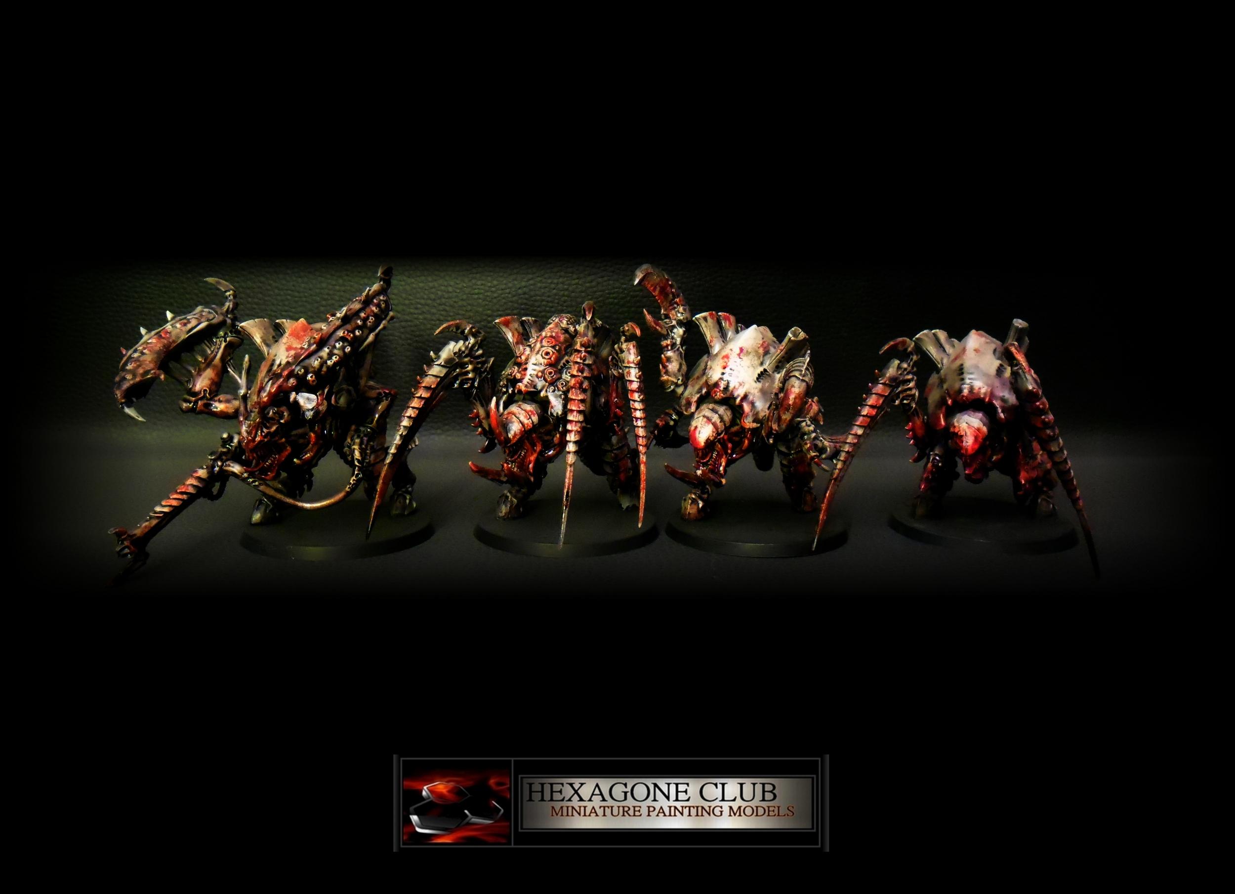 Warhammer 40.000 Tyranids Canifex Brood .