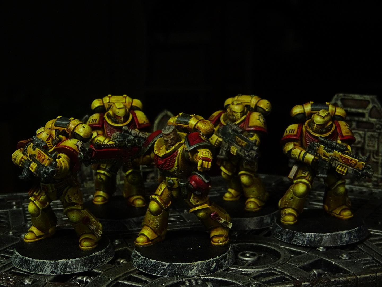 Imperial Fists intercessors