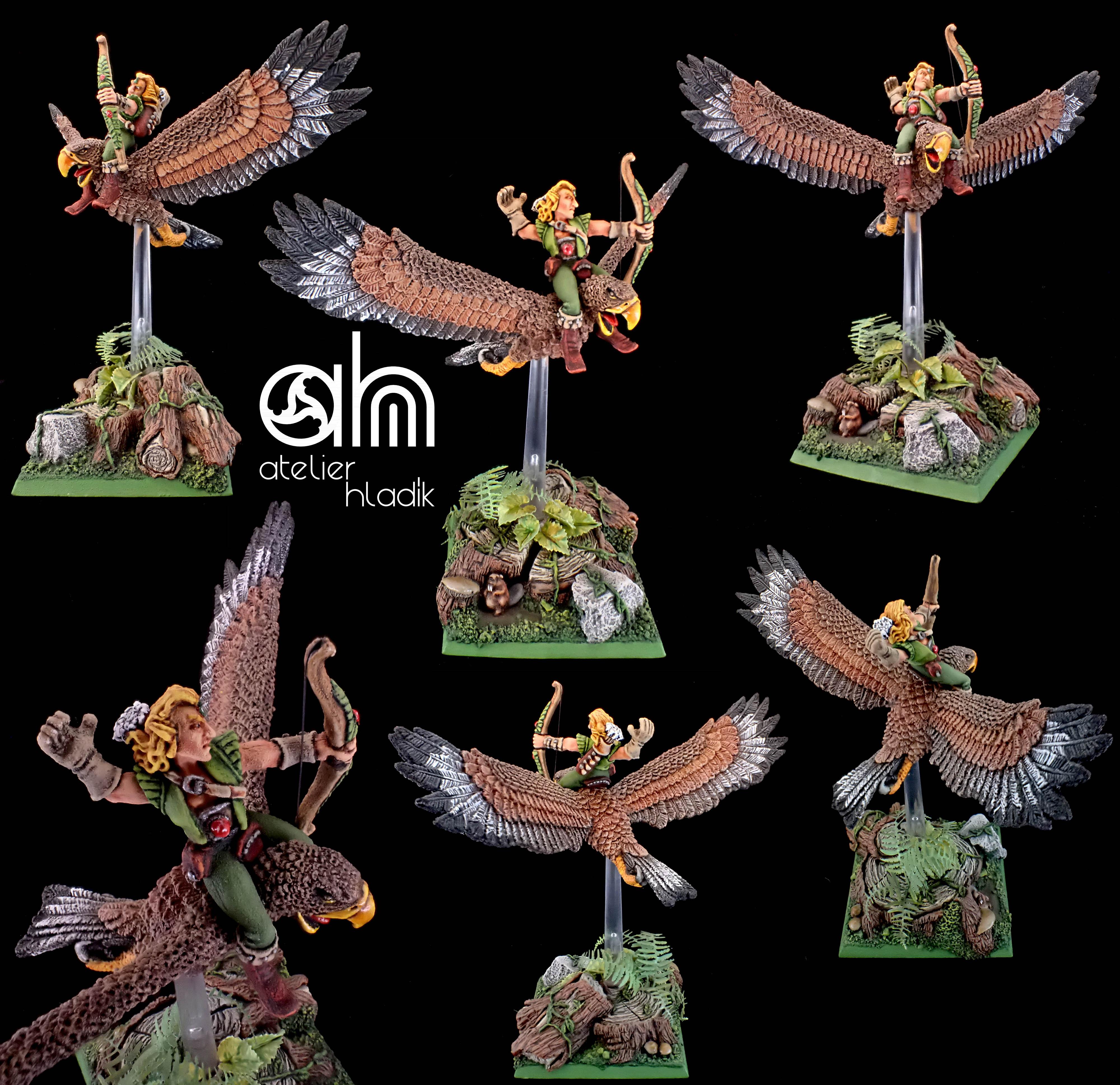 Wood elf hawk AH
