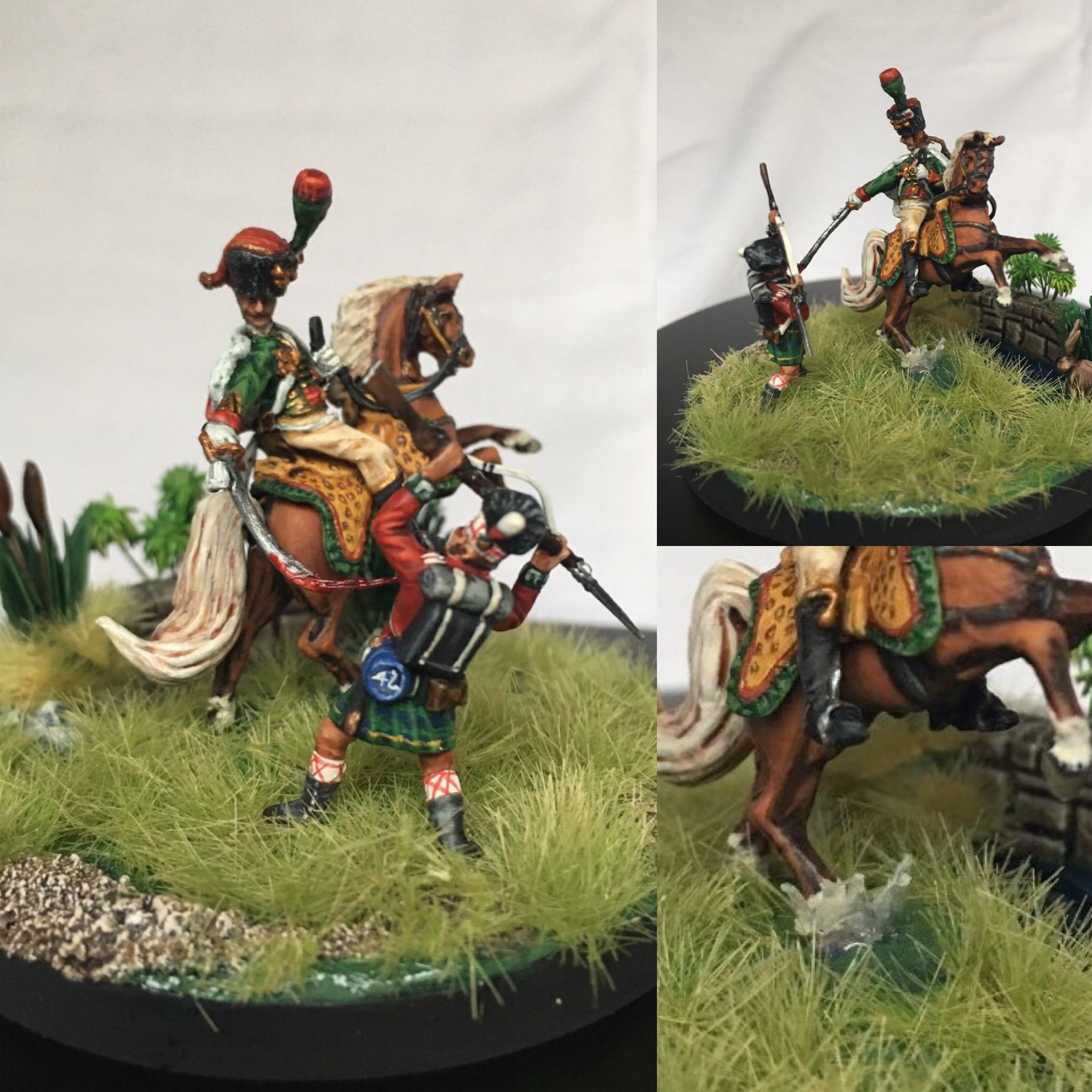 Waterloo, Chasseur à Cheval x Highlander