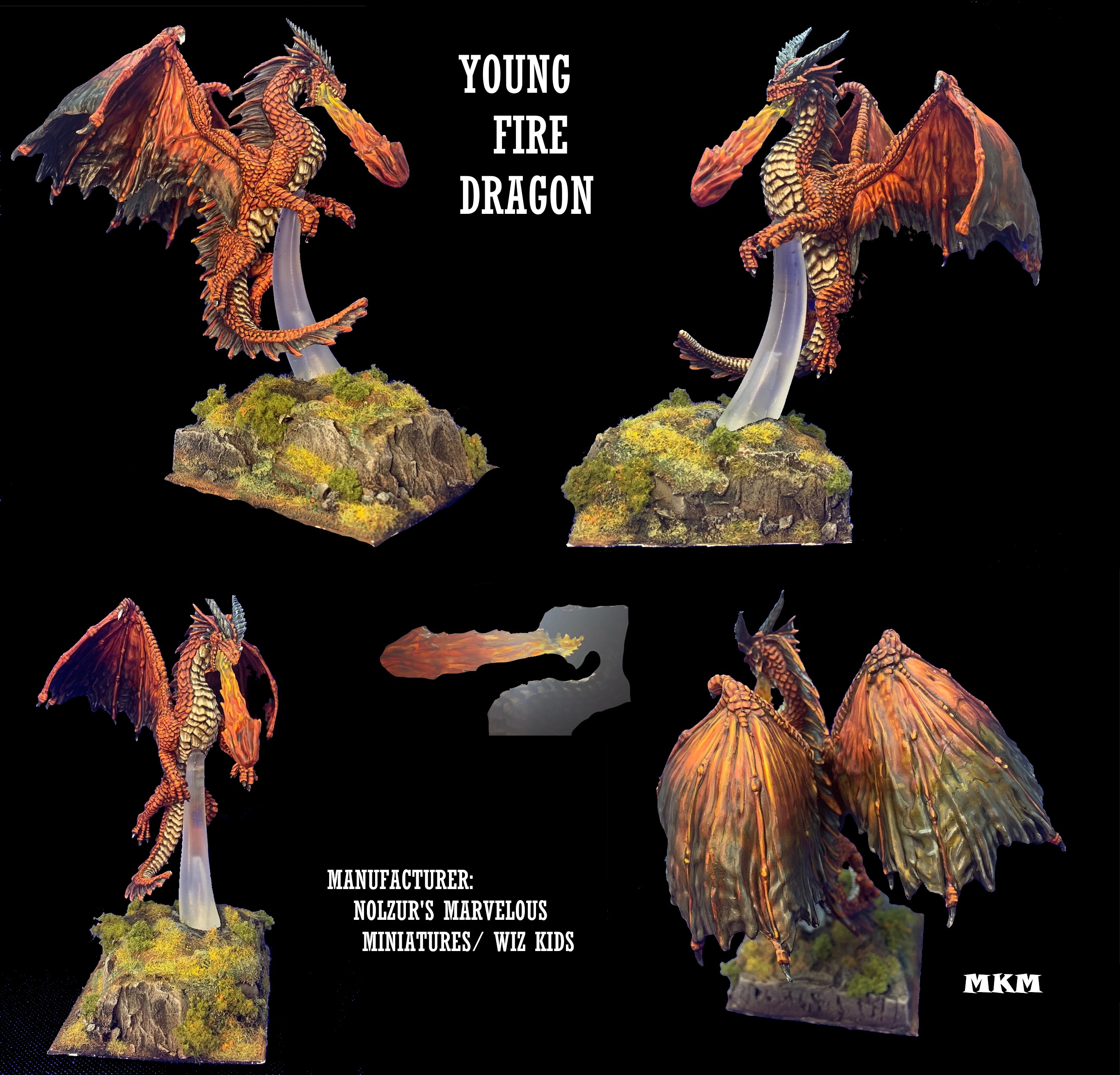 VIINTHURYOL, YOUNG FIRE DRAGON